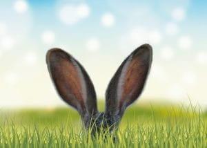 Le lapin de Pâques arrive dans la boutique Le Pralin.